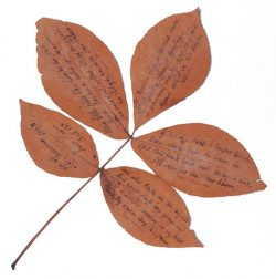 inscribed leaf