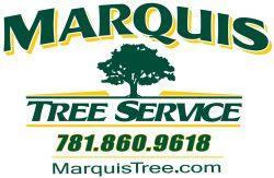Marquis Tree logo